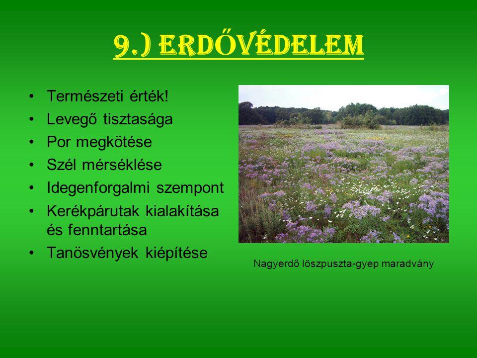 9.) Erd Ő védelem Természeti érték.