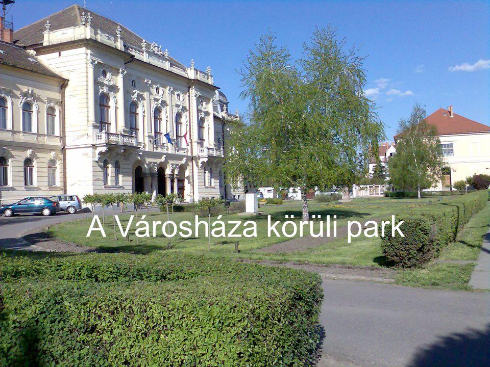A Városháza körüli park
