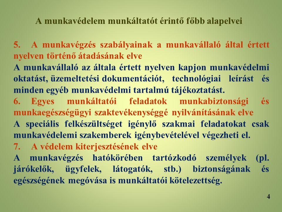 5.A munkavégzés szabályainak a munkavállaló által értett nyelven történő átadásának elve A munkavállaló az általa értett nyelven kapjon munkavédelmi o