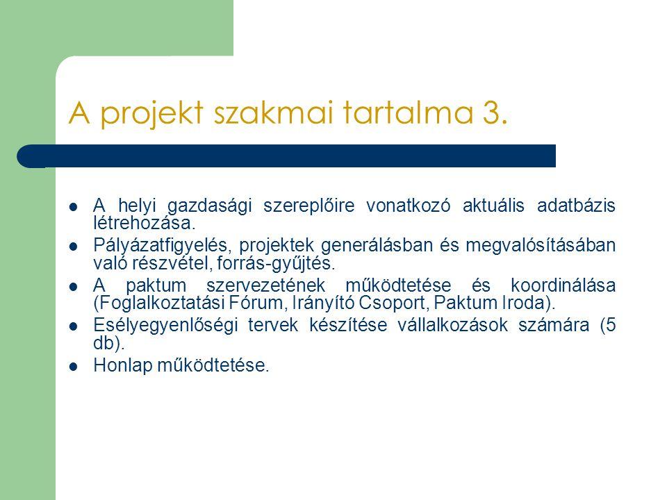 A projekt szakmai tartalma 3. A helyi gazdasági szereplőire vonatkozó aktuális adatbázis létrehozása. Pályázatfigyelés, projektek generálásban és megv