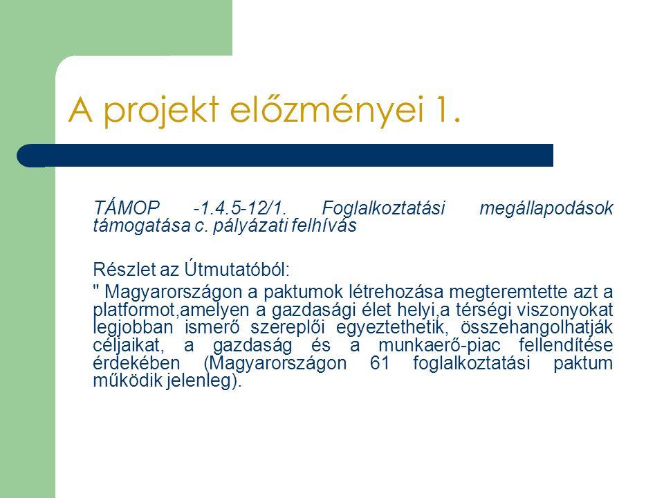 A projekt előzményei 1. TÁMOP -1.4.5-12/1. Foglalkoztatási megállapodások támogatása c. pályázati felhívás Részlet az Útmutatóból: