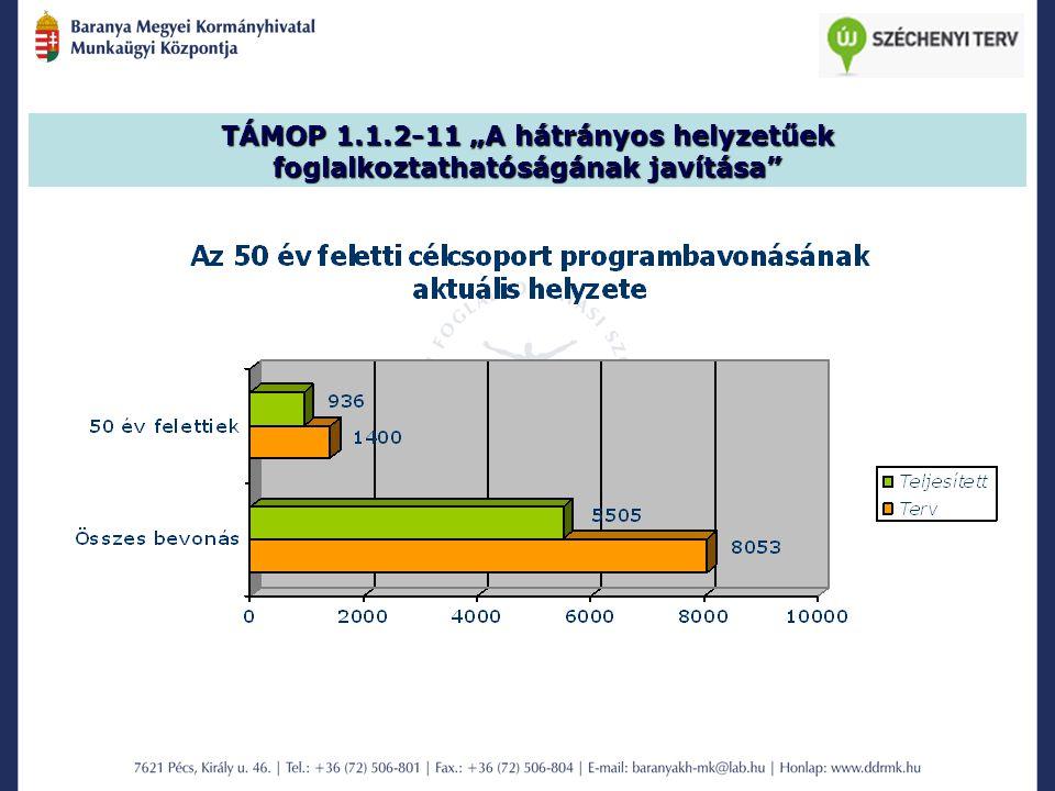 """TÁMOP 1.1.2-11 """"A hátrányos helyzetűek foglalkoztathatóságának javítása"""