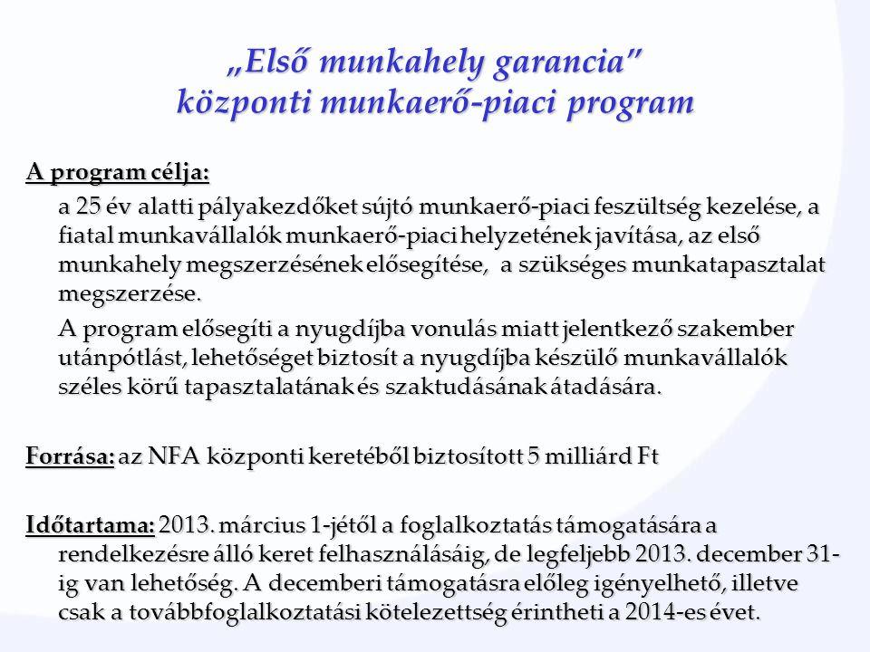 """""""Első munkahely garancia"""" központi munkaerő-piaci program A program célja: a 25 év alatti pályakezdőket sújtó munkaerő-piaci feszültség kezelése, a fi"""