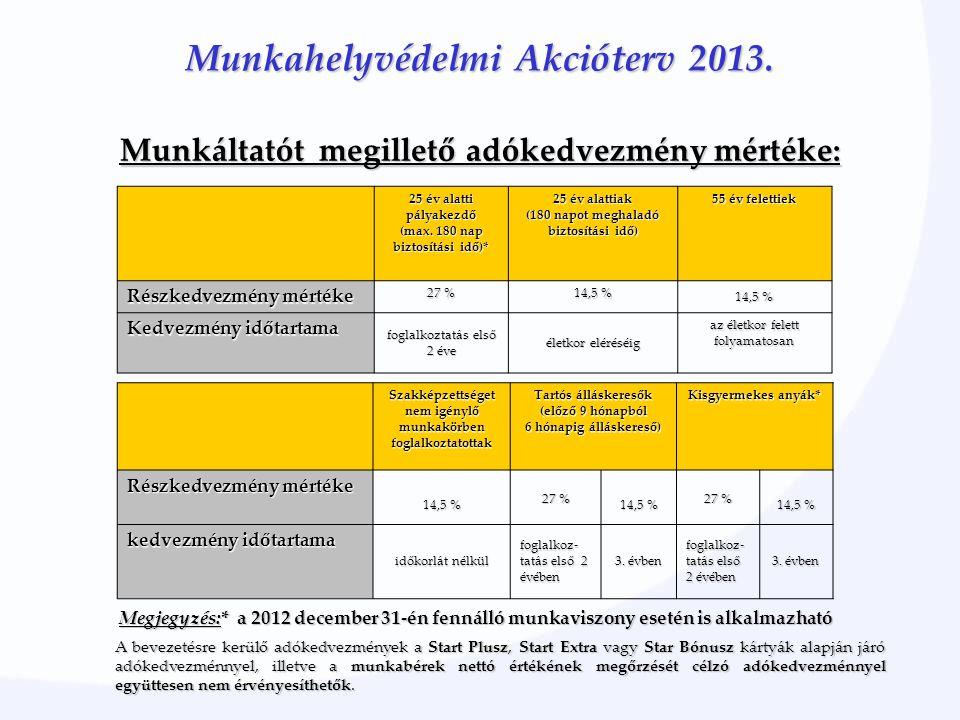 Munkahelyvédelmi Akcióterv 2013. 25 év alatti pályakezdő (max.