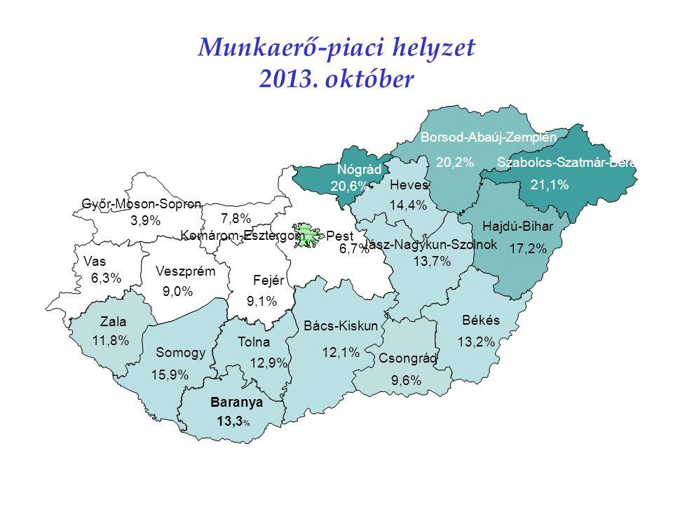 Munkaerő-piaci helyzet 2013.