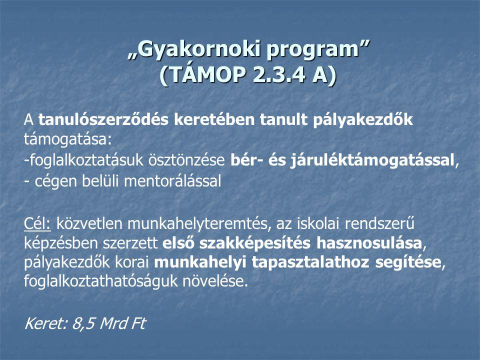 """""""Gyakornoki program"""" (TÁMOP 2.3.4 A) A tanulószerződés keretében tanult pályakezdők támogatása: -foglalkoztatásuk ösztönzése bér- és járuléktámogatáss"""