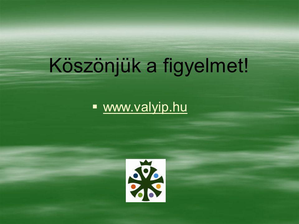 Köszönjük a figyelmet!   www.valyip.hu www.valyip.hu