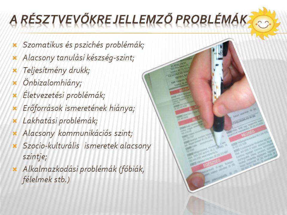  Szomatikus és pszichés problémák;  Alacsony tanulási készség-szint;  Teljesítmény drukk;  Önbizalomhiány;  Életvezetési problémák;  Erőforrások ismeretének hiánya;  Lakhatási problémák;  Alacsony kommunikációs szint;  Szocio-kulturális ismeretek alacsony szintje;  Alkalmazkodási problémák (fóbiák, félelmek stb.)