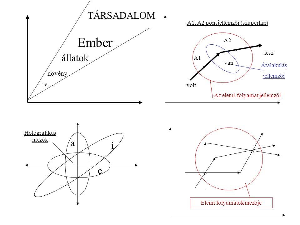 kő növény állatok Ember TÁRSADALOM a i e o o van lesz volt A1 A2 Átalakulás jellemzői Az elemi folyamat jellemzői A1, A2 pont jellemzői (szuperhúr) o o Elemi folyamatok mezője Holografikus mezők