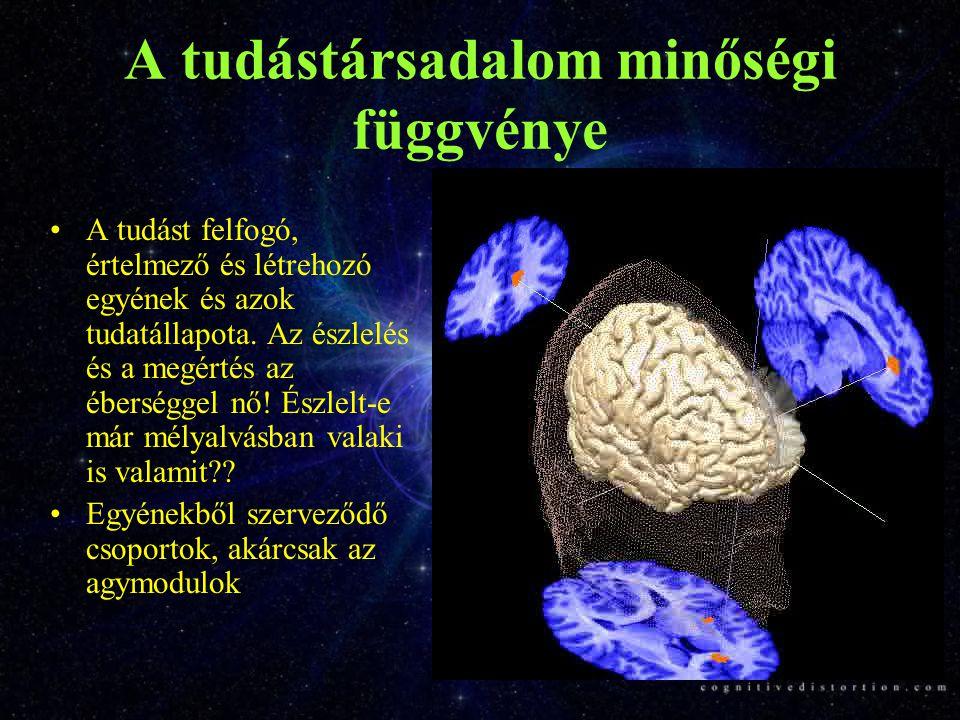A tudástársadalom minőségi függvénye A tudást felfogó, értelmező és létrehozó egyének és azok tudatállapota.