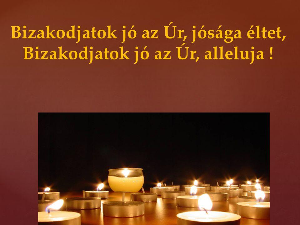 Bizakodjatok jó az Úr, jósága éltet, Bizakodjatok jó az Úr, alleluja !