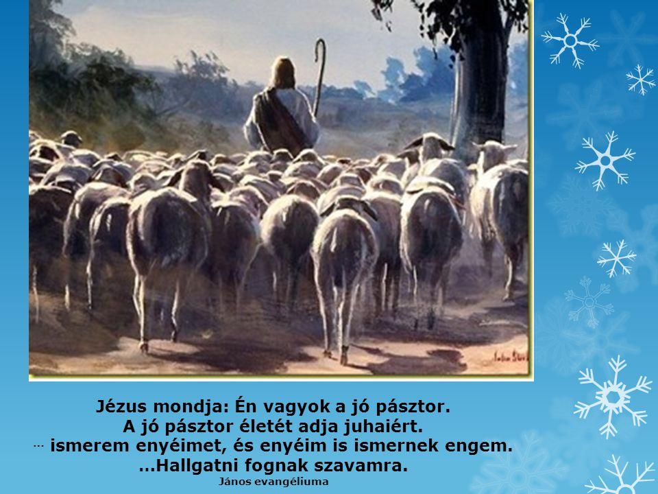 Az Úr a pásztorom, jó pásztor Ő, Nyájával arra jár, Amerre várva vár, A forrás hűs vize, a zöld mező.