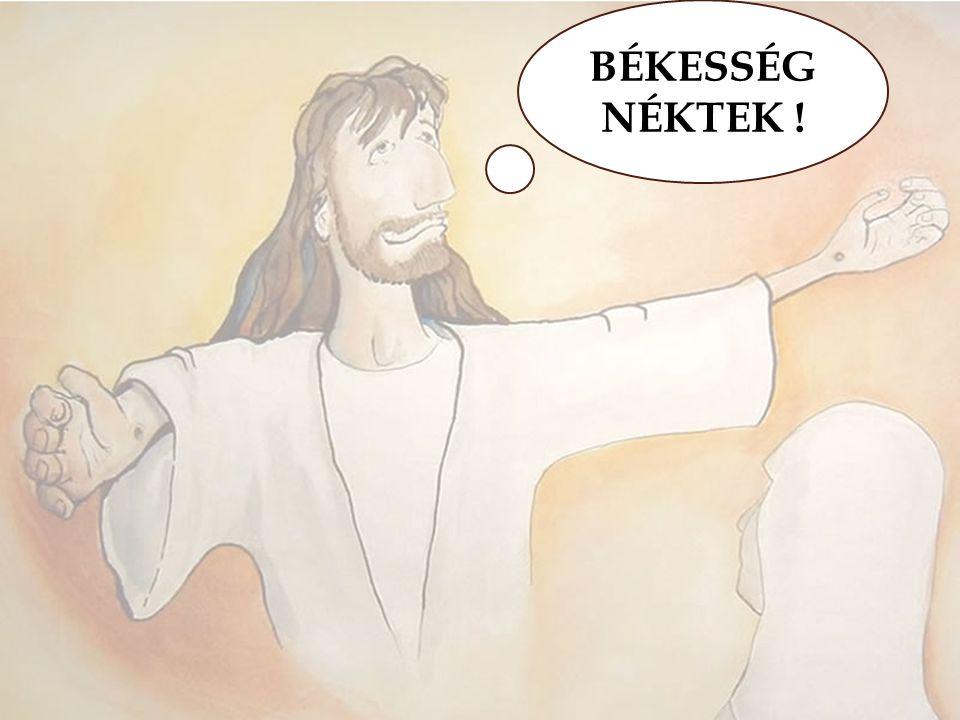 BÉKESSÉG NÉKTEK !