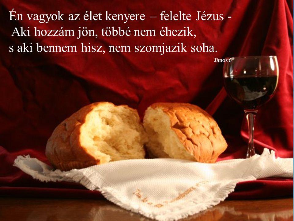 Én vagyok az élet kenyere – felelte Jézus - Aki hozzám jön, többé nem éhezik, s aki bennem hisz, nem szomjazik soha.