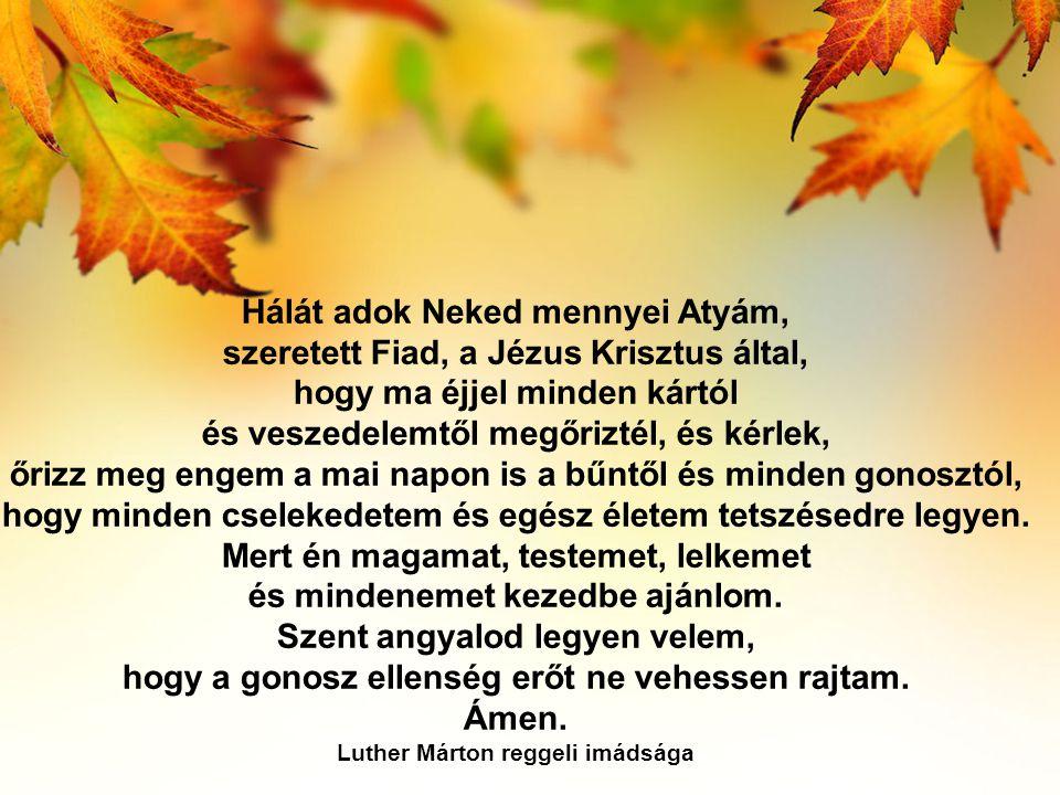Hálát adok Neked mennyei Atyám, szeretett Fiad, a Jézus Krisztus által, hogy ma éjjel minden kártól és veszedelemtől megőriztél, és kérlek, őrizz meg engem a mai napon is a bűntől és minden gonosztól, hogy minden cselekedetem és egész életem tetszésedre legyen.