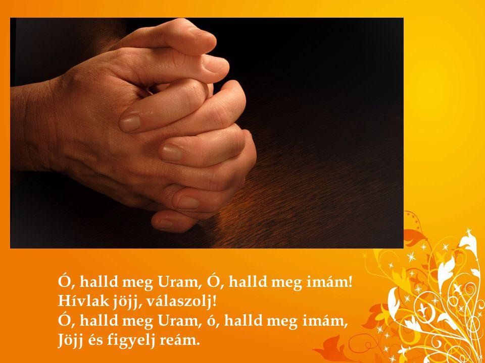 Ó, halld meg Uram, Ó, halld meg imám! Hívlak jöjj, válaszolj! Ó, halld meg Uram, ó, halld meg imám, Jöjj és figyelj reám.