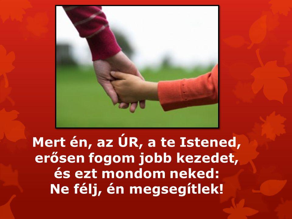 Mert én, az ÚR, a te Istened, erősen fogom jobb kezedet, és ezt mondom neked: Ne félj, én megsegítlek!