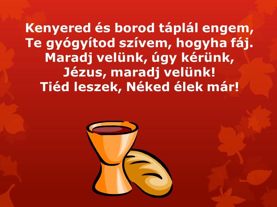 Kenyered és borod táplál engem, Te gyógyítod szívem, hogyha fáj. Maradj velünk, úgy kérünk, Jézus, maradj velünk! Tiéd leszek, Néked élek már!