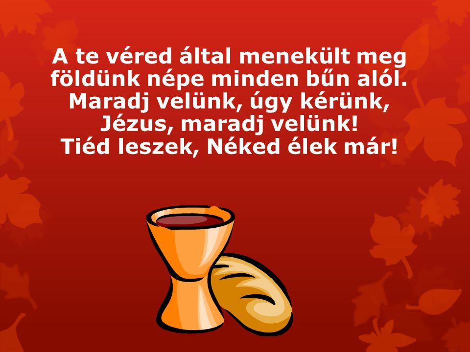 A te véred által menekült meg földünk népe minden bűn alól. Maradj velünk, úgy kérünk, Jézus, maradj velünk! Tiéd leszek, Néked élek már!