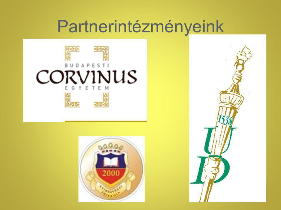 Partnerintézményeink