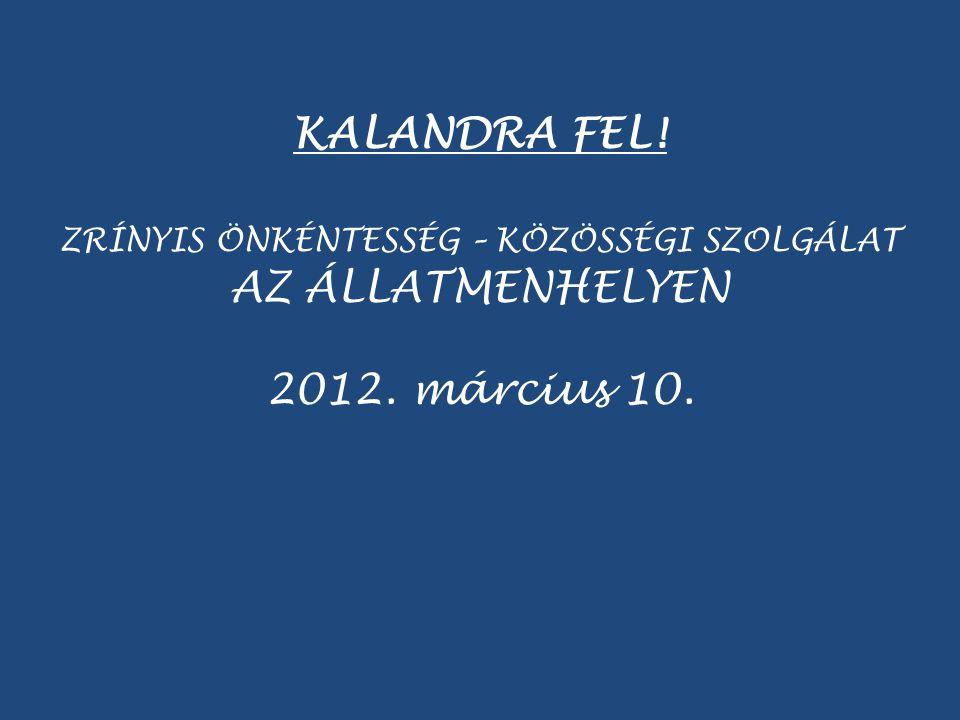 KALANDRA FEL! ZRÍNYIS ÖNKÉNTESSÉG – KÖZÖSSÉGI SZOLGÁLAT AZ ÁLLATMENHELYEN 2012. március 10.