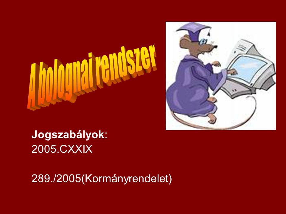 Jogszabályok: 2005.CXXIX 289./2005(Kormányrendelet)