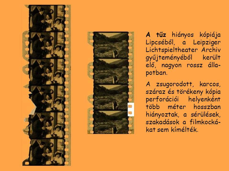 A tűz hiányos kópiája Lipcséből, a Leipziger Lichtspieltheater Archiv gyűjteményéből került elő, nagyon rossz álla- potban. A zsugorodott, karcos, szá