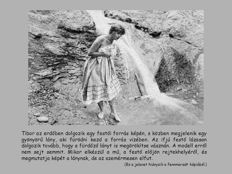 Tibor az erdőben dolgozik egy festői forrás képén, s közben megjelenik egy gyönyörű lány, aki fürödni kezd a forrás vizében. Az ifjú festő lázasan dol