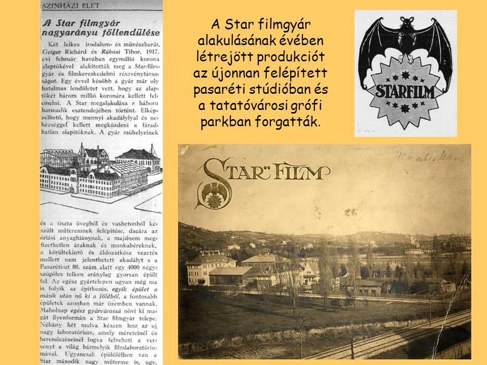 A Star filmgyár alakulásának évében létrejött produkciót az újonnan felépített pasaréti stúdióban és a tatatóvárosi grófi parkban forgatták.