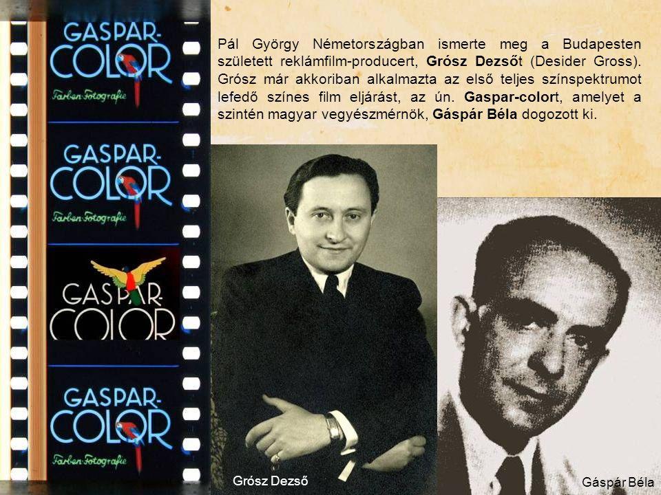 Pál György Németországban ismerte meg a Budapesten született reklámfilm-producert, Grósz Dezsőt (Desider Gross). Grósz már akkoriban alkalmazta az els