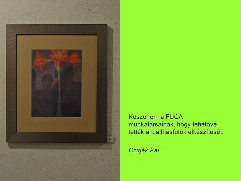 Köszönöm a FUGA munkatársainak, hogy lehetővé tették a kiállításfotók elkészítését. Czirják Pál