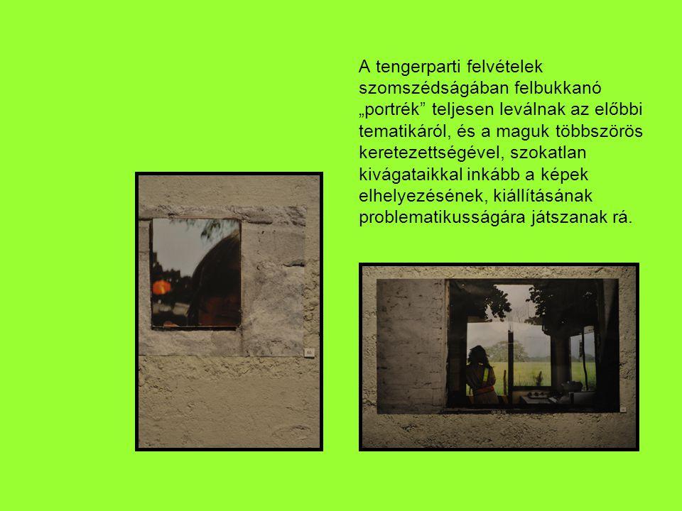 A kiállítás nagyobb termében változatos összevisszaságban sorakoztak a képek.