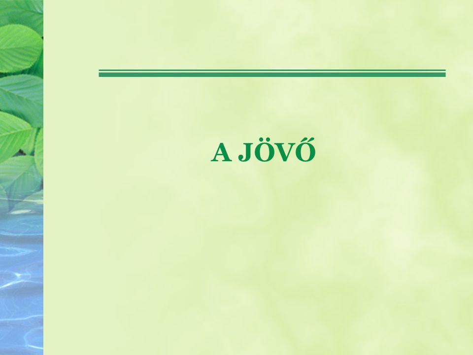 Hgt – OHT II lerakást érintő változások Minden tevékenység, ami nem hasznosítás, ártalmatlanítás Hulladék megelőzési program 2013-ig Az engedélyezési eljárások során a hatóságok megtagadhatják hulladékok beszállítását vagy kivitelét, ha azáltal a hazai hulladékgazdálkodási célok nem valósíthatók meg Biohulladékokra, illetve a komposztra vonatkozó minőségi követelmények előírása, A TSZH tekintetében a papír, üveg, műanyag és fém anyagokra: 50%-os újrahasználat, illetve újrafeldolgozás 2020-ra Építési-bontási hulladék hasznosítás 70% (2020)