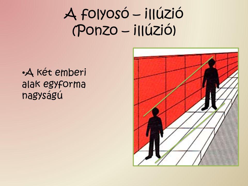 A folyosó – illúzió (Ponzo – illúzió) A két emberi alak egyforma nagyságú