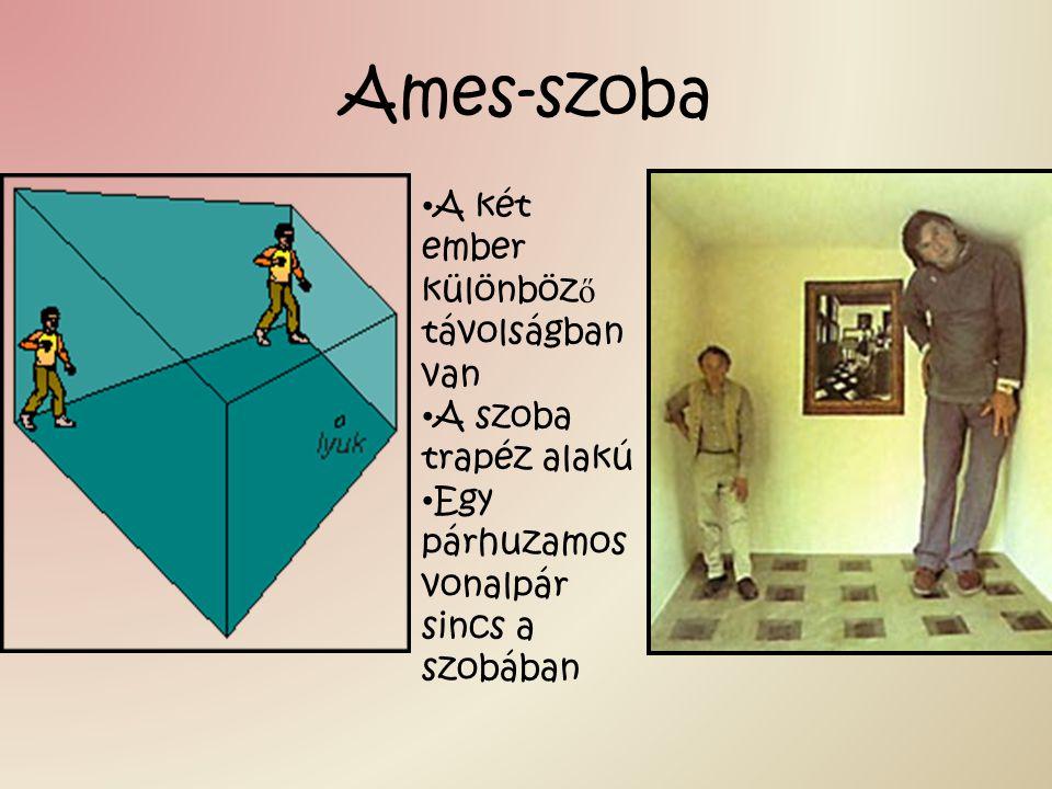 Ames-szoba A két ember különböz ő távolságban van A szoba trapéz alakú Egy párhuzamos vonalpár sincs a szobában