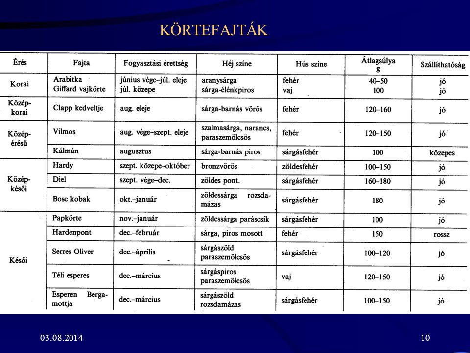 KÖRTEFAJTÁK 03.08.201410