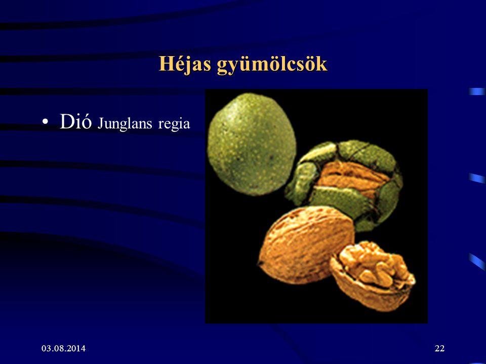 03.08.201422 Héjas gyümölcsök Dió Junglans regia