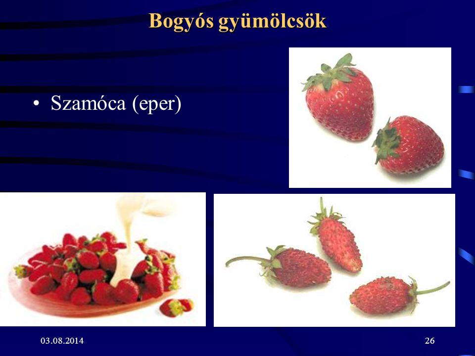 03.08.201426 Bogyós gyümölcsök Szamóca (eper)