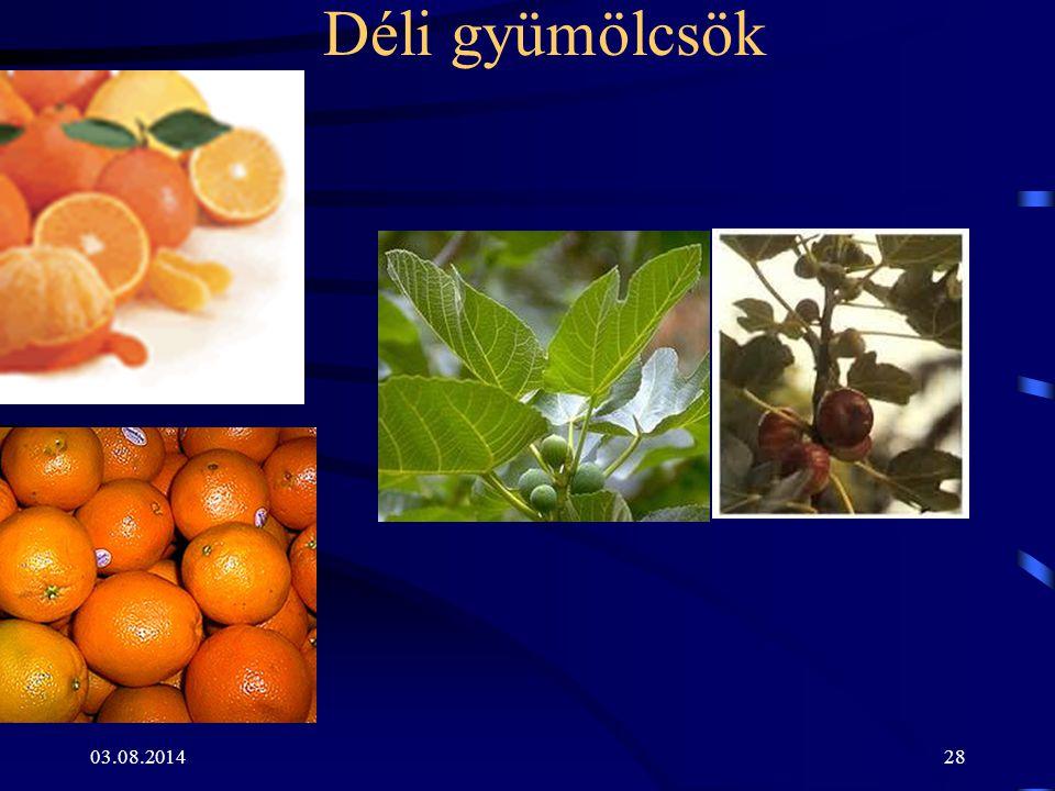 03.08.201428 Déli gyümölcsök