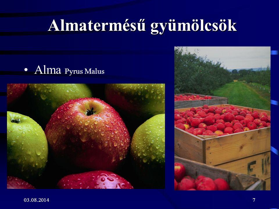 03.08.20147 Almatermésű gyümölcsök Alma Pyrus Malus