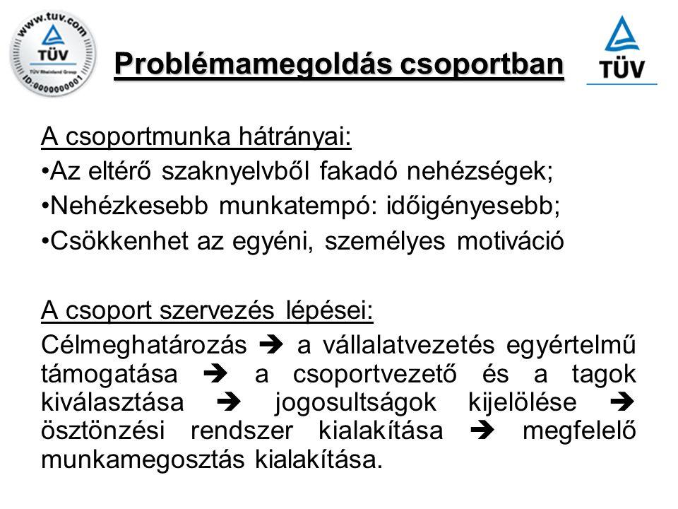 Problémamegoldás csoportban A csoportmunka hátrányai: Az eltérő szaknyelvből fakadó nehézségek; Nehézkesebb munkatempó: időigényesebb; Csökkenhet az e
