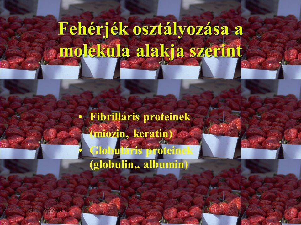 2002. október 15.5 Fehérjék osztályozása a molekula alakja szerint Fibrilláris proteinek (miozin, keratin) Globuláris proteinek (globulin,, albumin)