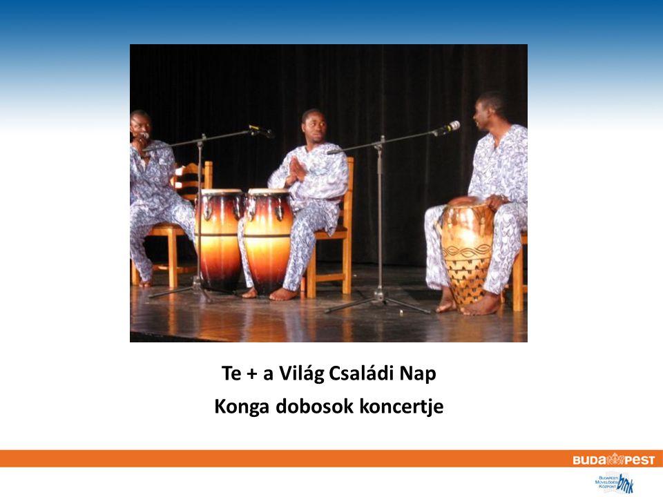 Te + a Világ Családi Nap Konga dobosok koncertje