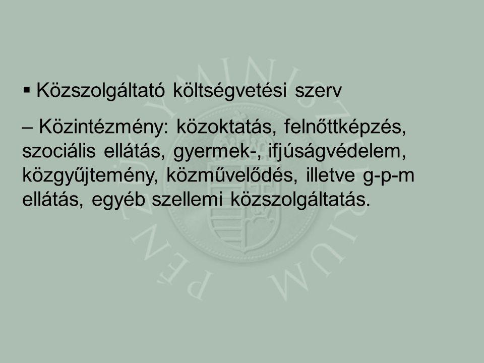  Közszolgáltató költségvetési szerv – Közintézmény: közoktatás, felnőttképzés, szociális ellátás, gyermek-, ifjúságvédelem, közgyűjtemény, közművelődés, illetve g-p-m ellátás, egyéb szellemi közszolgáltatás.