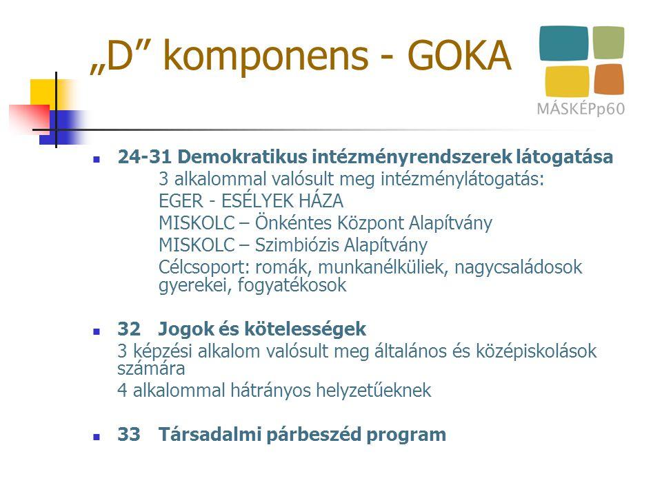 """""""D"""" komponens - GOKA 24-31 Demokratikus intézményrendszerek látogatása 3 alkalommal valósult meg intézménylátogatás: EGER - ESÉLYEK HÁZA MISKOLC – Önk"""