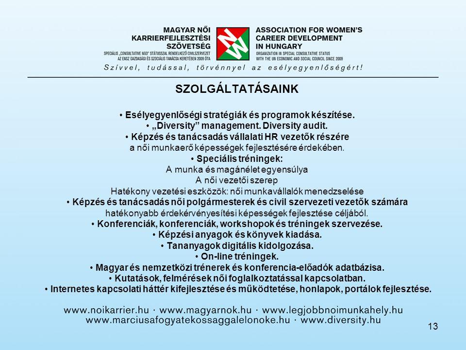 13 SZOLGÁLTATÁSAINK Esélyegyenlőségi stratégiák és programok készítése.