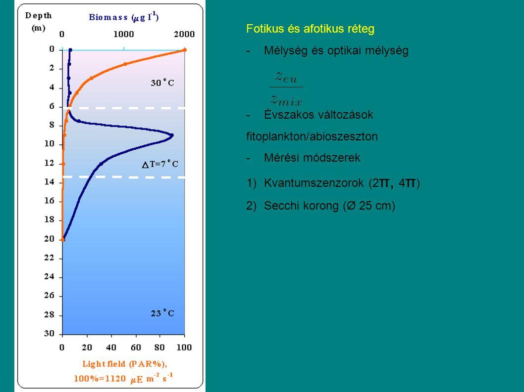 Fotikus és afotikus réteg -Mélység és optikai mélység -Évszakos változások fitoplankton/abioszeszton -Mérési módszerek 1)Kvantumszenzorok (2 π, 4 π ) 2)Secchi korong (Ø 25 cm)