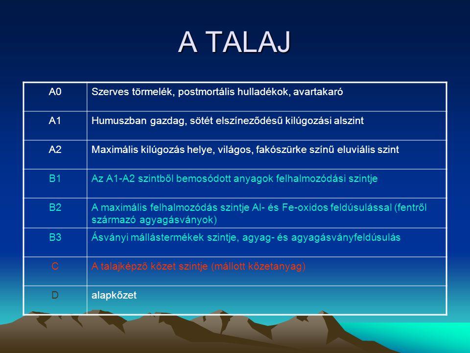 A TALAJ A magyar gyakorlat alapvetően 3 szintet különböztet meg hazánk talajainak viszonylatában A – egyenletesen humuszos (általában magas humusztartalmú (erdőtalajok)) szint B – az A szinttől a talajképző kőzet felé haladva fokozatosan csökkenő humusztartalmú szint C – talajképző közet