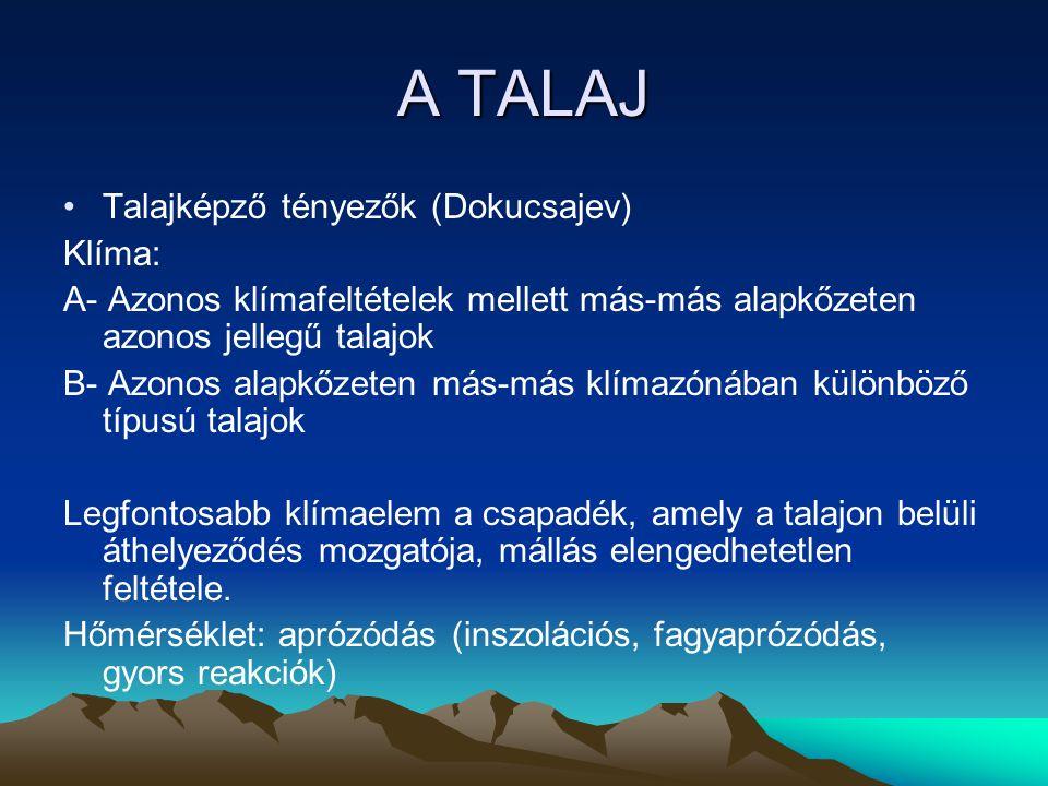 A TALAJ Talajképző tényezők (Dokucsajev) Növényzet (a klímahatások függvényében) -talaj humusztartalma -savtartalom (kémiai reakcióképesség) Pl.:a tajgaterületek tűlevelű erdőségeiben dús a felszíni növényborítás, mégis gyenge minőségű talajok (podzol) képződnek, mert -a többnyire örökzöld tűlevelűek savas hulladékot juttatnak a felszínre -ezek nem rothadnak el, így a humusztartalom is alacsony