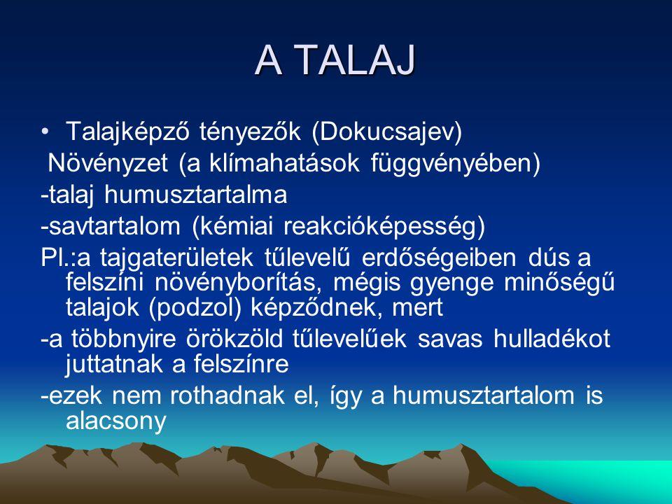 A TALAJ Talajképző tényezők (Dokucsajev) Növényzet (a klímahatások függvényében) -talaj humusztartalma -savtartalom (kémiai reakcióképesség) Pl.:a taj